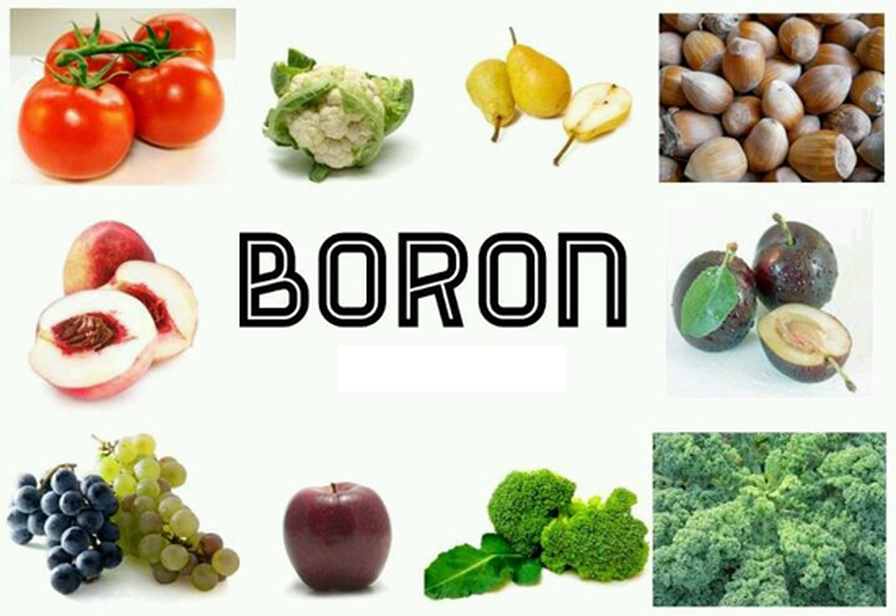 Vegetables Contain Zinc Food for life natural sources of boron workwithnaturefo