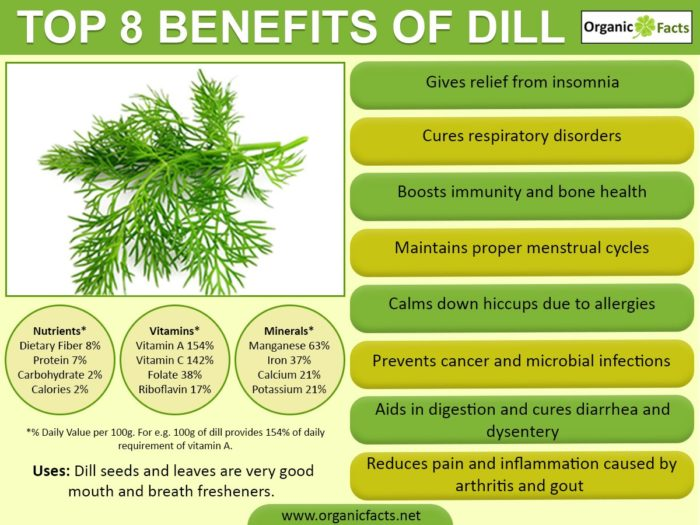 dill-infographic.jpg