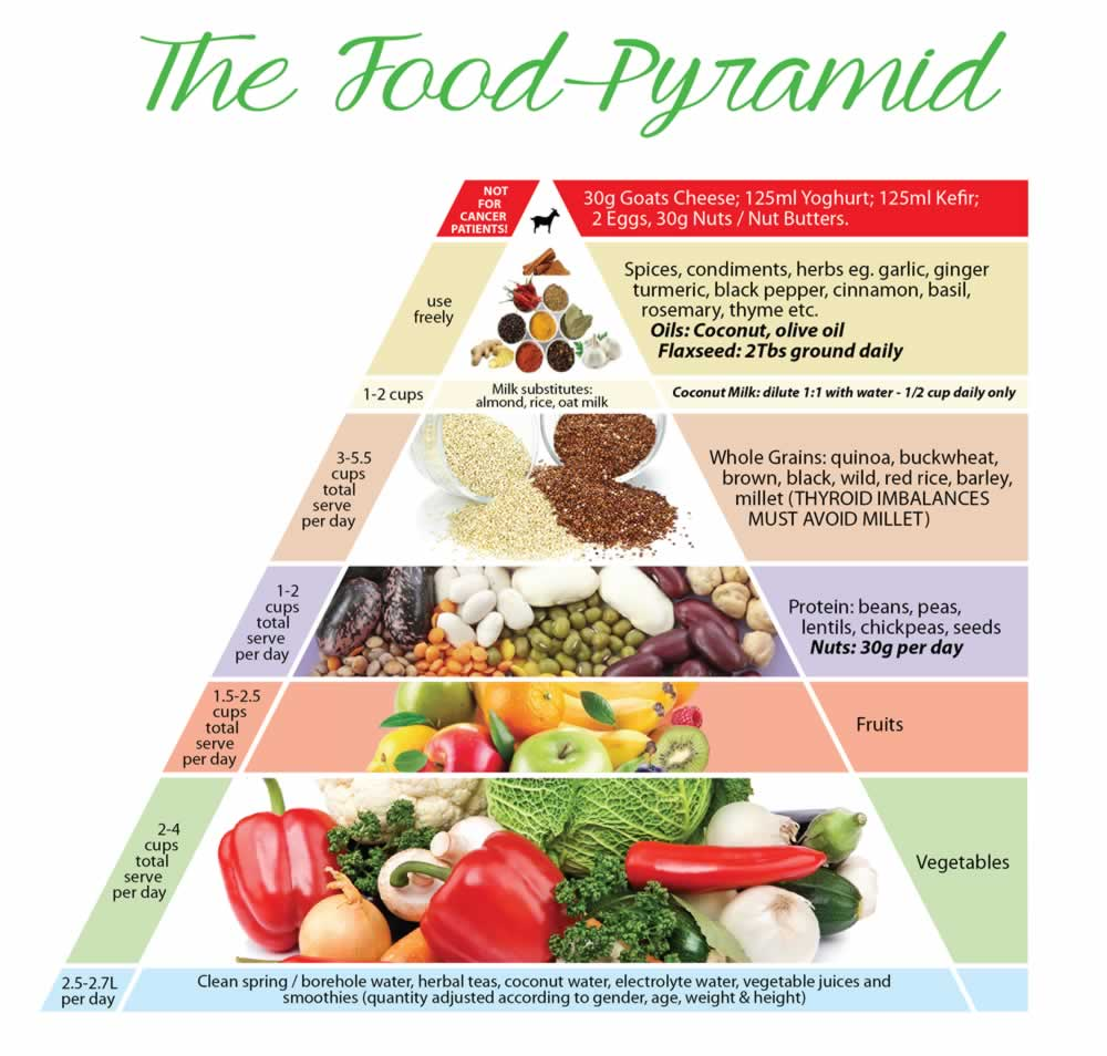 Whole Food And Plant Based Diet Plan