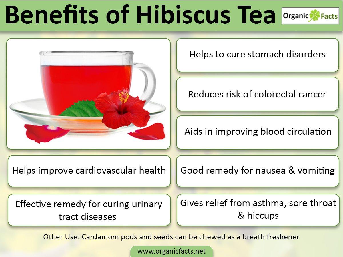 Hibiscus tea hibiscusteainfog izmirmasajfo