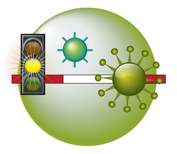immune-system-body-of-teaser-3-b9a45c0178567897c85f6afcce784b1c.png