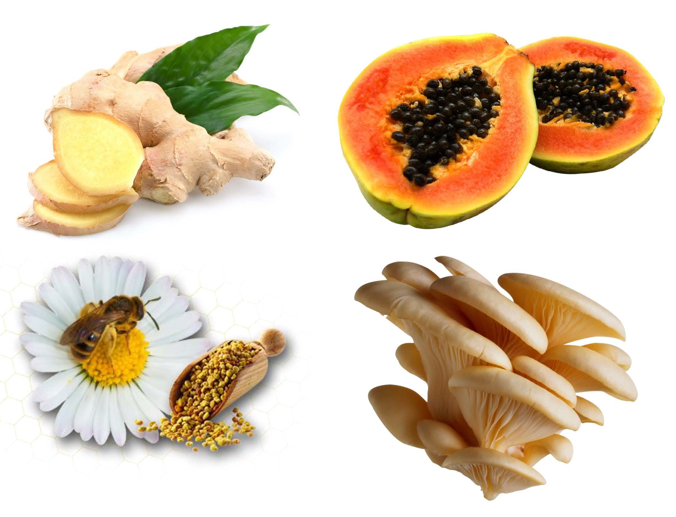 Food For Life - High Enzyme Foods
